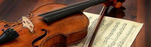 Cercasi Insegnante Di Violino
